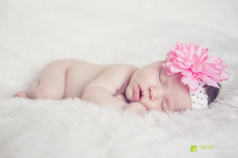 kingston wedding and family photographer - sarah rouleau photography - baby kendall (10)