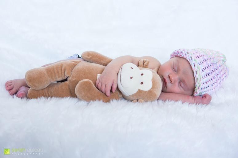 kingston wedding photographer - kingston newborn photographer - sarah rouleau photography - baby ainsley-1