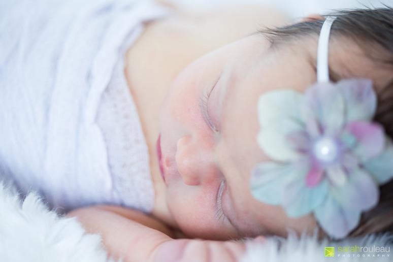 kingston wedding photographer - kingston newborn photographer - sarah rouleau photography - baby ainsley-11