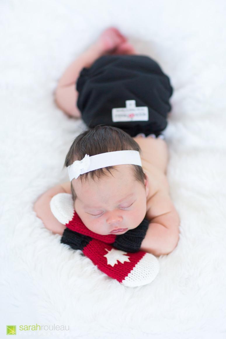 kingston wedding photographer - kingston newborn photographer - sarah rouleau photography - baby ainsley-5 (2)