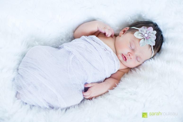 kingston wedding photographer - kingston newborn photographer - sarah rouleau photography - baby ainsley-5