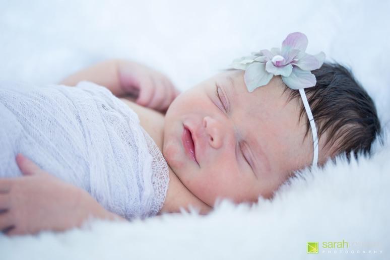 kingston wedding photographer - kingston newborn photographer - sarah rouleau photography - baby ainsley-6 (2)