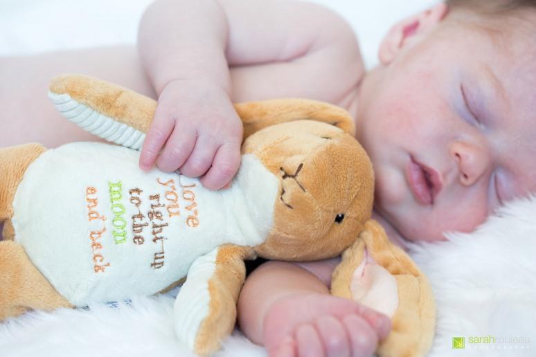 kingston wedding photographer - kingston newborn photographer - sarah rouleau photography - baby brock-19