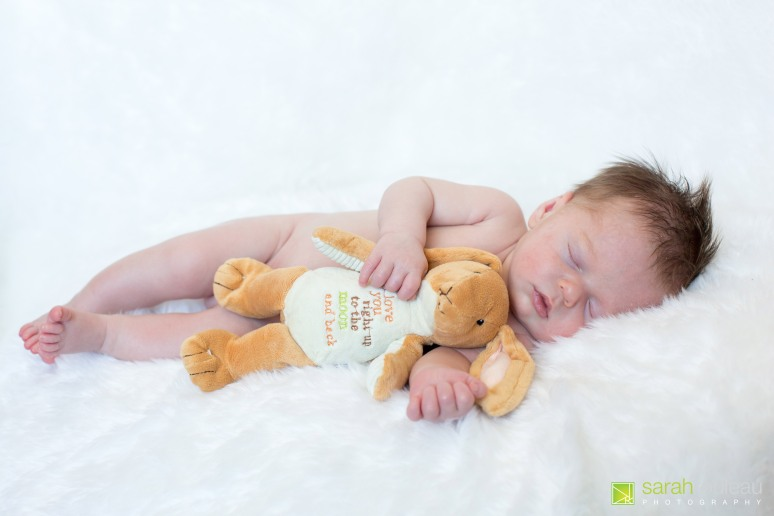 kingston wedding photographer - kingston newborn photographer - sarah rouleau photography - baby brock-20