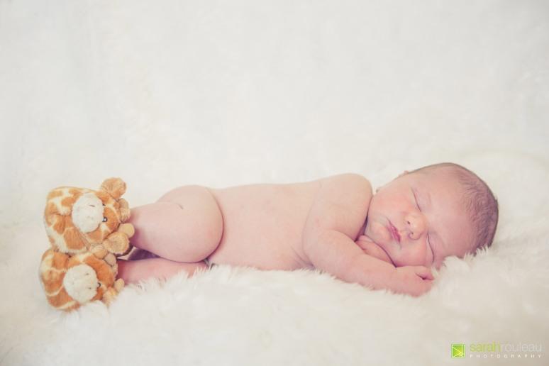 kingston wedding photographer - kingston newborn photographer - sarah rouleau photography - baby joshua-56