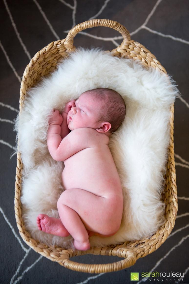 kingston wedding photographer - kingston newborn photographer - sarah rouleau photography - baby joshua-57