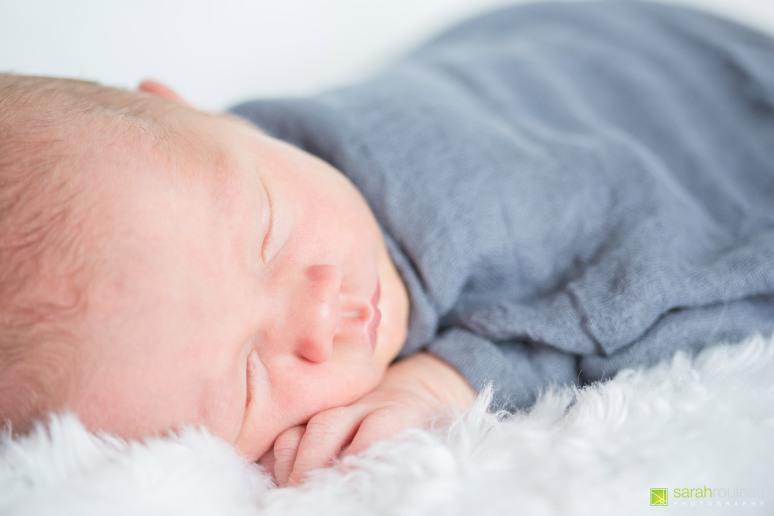 kingston wedding photographer - kingston newborn photographer - sarah rouleau photography - baby luke-10