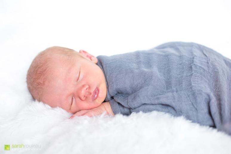 kingston wedding photographer - kingston newborn photographer - sarah rouleau photography - baby luke-9