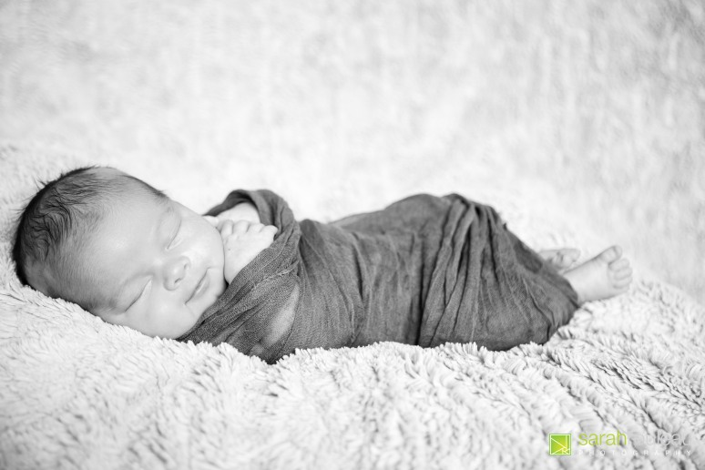kingston wedding photographer - kingston newborn photographer - sarah rouleau photography - baby nathan-8