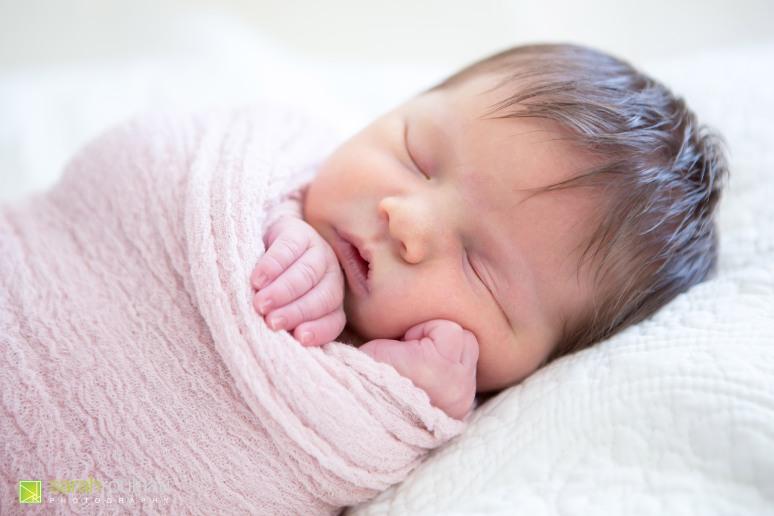kingston-wedding-photographer-kingsto-newborn-photographer-sarah-rouleau-photography-baby-evelyn-2