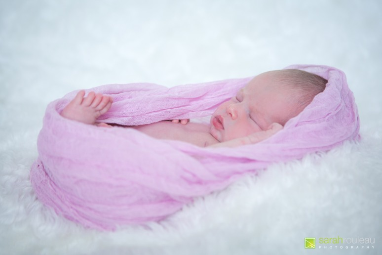Kingston Newborn Photographer - sarah rouleau photography - baby brooke_-31