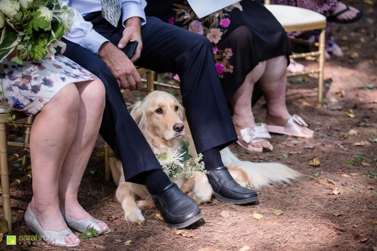 kingston wedding photographer - sarah rouleau photography - courtney and denis-20