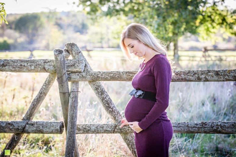 Kingston Maternity Photographer - Sarah Rouleau Photograpy - Jessica Chad Plus One-3