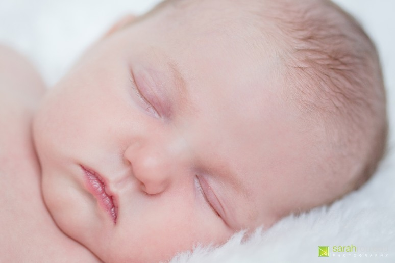 kingston newborn photography - sarah rouleau photography - Baby Norah-3
