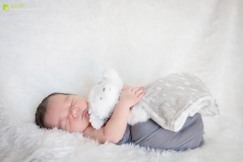 kingston newborn photographer - sarah rouleau photography - baby thomas-24