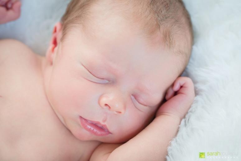 kingston newborn photographer - sarah rouleau photography - Benjamin and Katherine-3