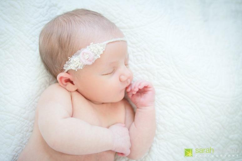 kingston newborn photographer - sarah rouleau photography - baby louis-2