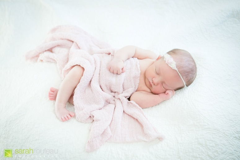 kingston newborn photographer - sarah rouleau photography - baby louis-5