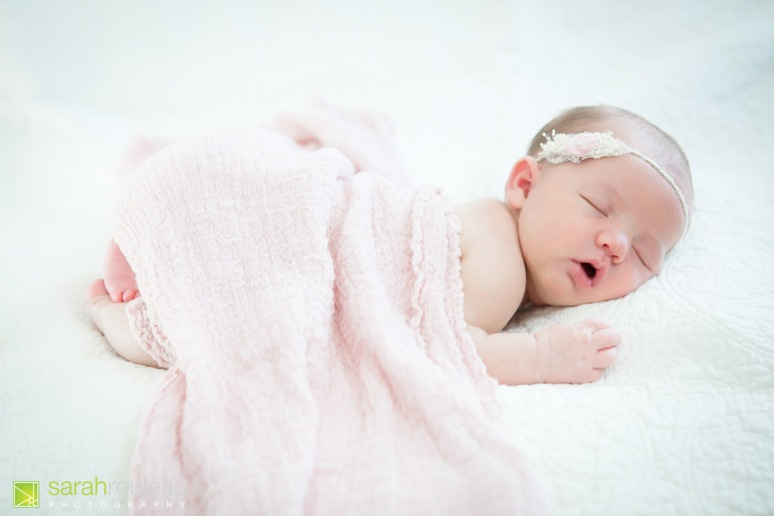 kingston newborn photographer - sarah rouleau photography - baby louis-6