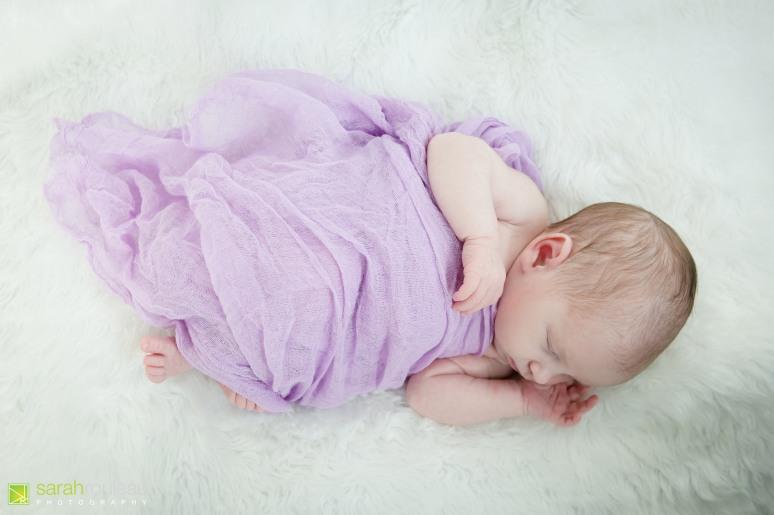 kingston newborn photographer - sarah rouleau photography - baby sarah-7