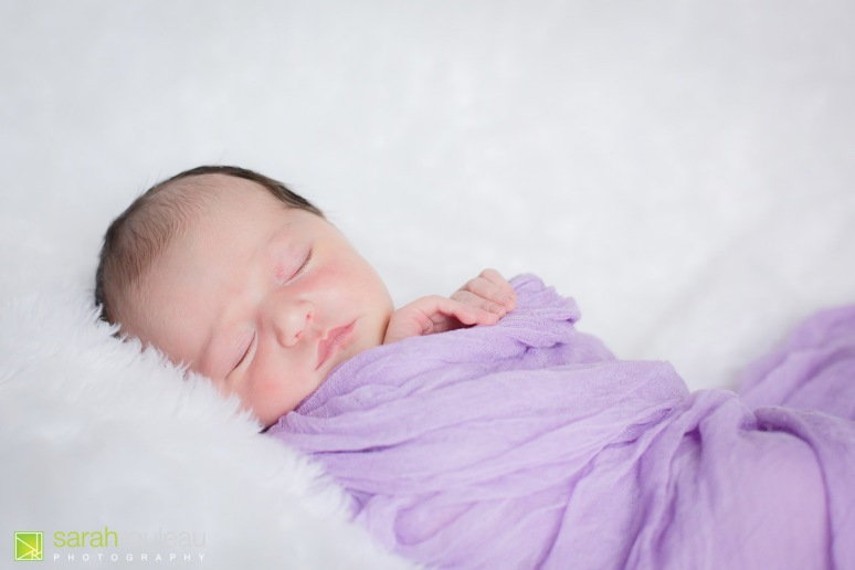 kingston newborn photographer - sarah rouleau photography - Baby Lillian-6
