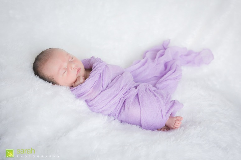 kingston newborn photographer - sarah rouleau photography - Baby Lillian-8